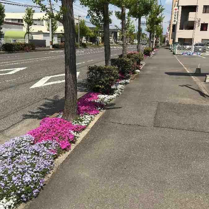 「こころに花をSAKASOUプロジェクト」